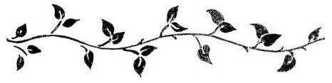 vine-silhouette-clipart-1